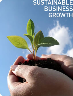 5 Ways To Sustain Your Business Growth Consistently